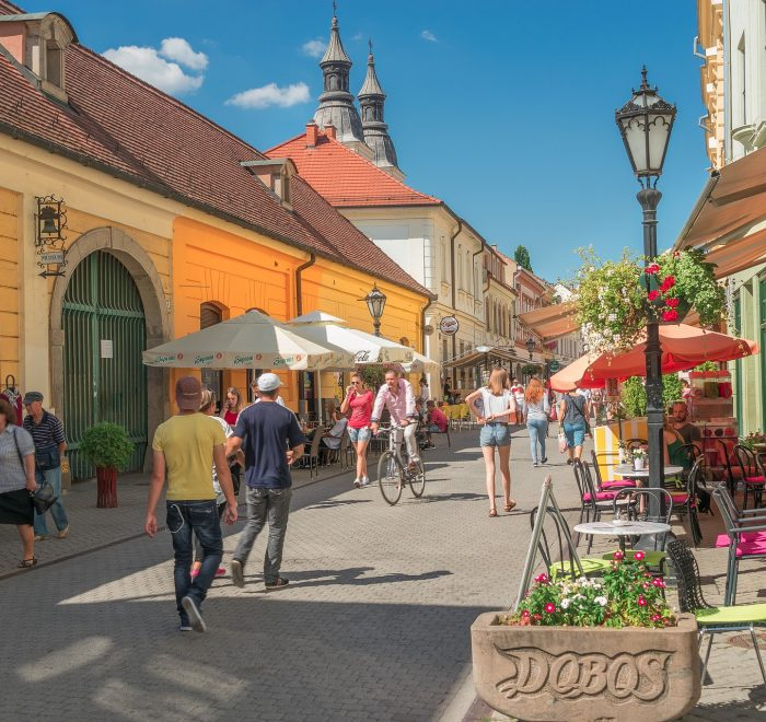 Full-day wine-tasting tour in Eger
