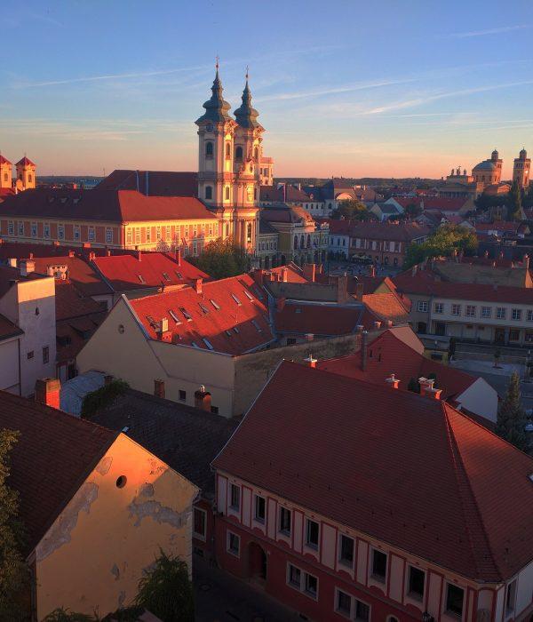 Full-day wine-tasting tour in Eger